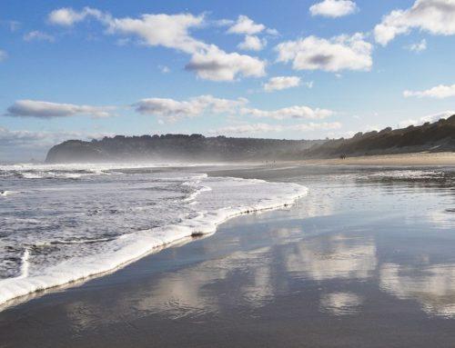 Dunedin bietet zahlreiche Freizeitmöglichkeiten neben dem Studium